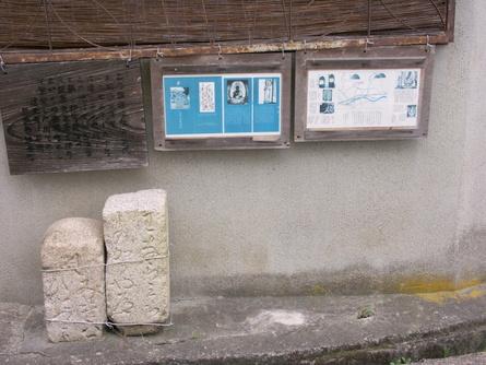 Yokooji22
