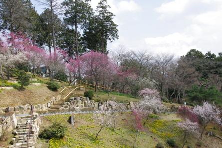 Ishiyama12