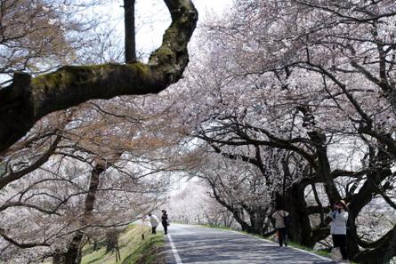Kisogawa04