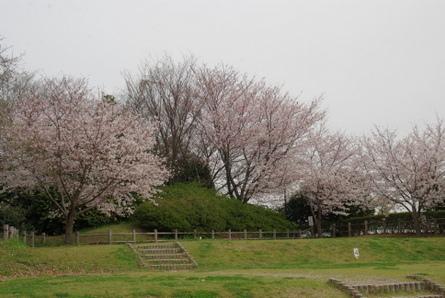 Shiawase12