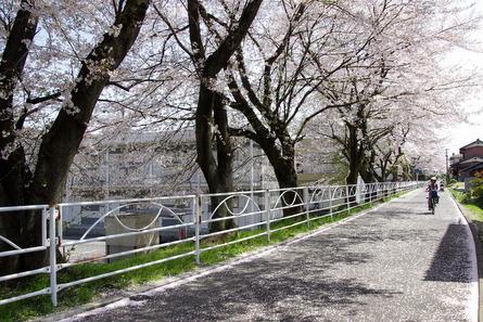 Tosai06