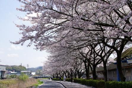 Tosai09_2