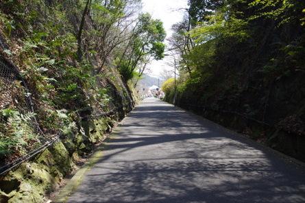 Tosai12