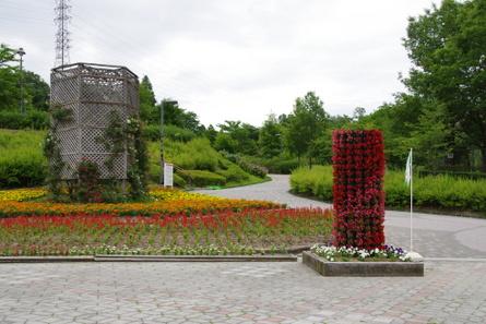 Komaki01