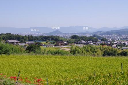 Katsuragi09