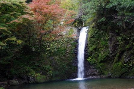 Yokotani03