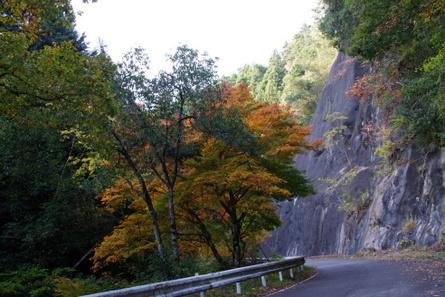 Yokotani06