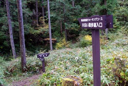 Yokotani07