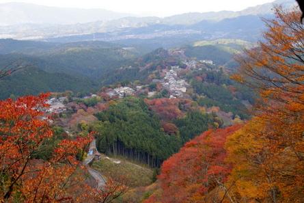 Yoshino13