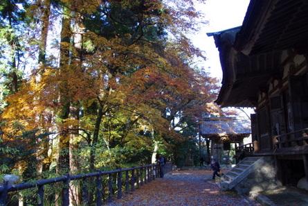 Hyakusaiji12