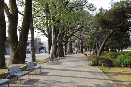 Shinkano01