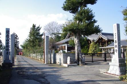 Shinkano11
