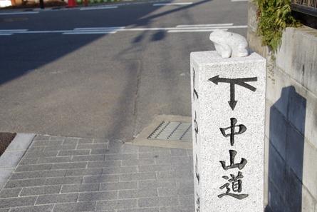 Shinkano15