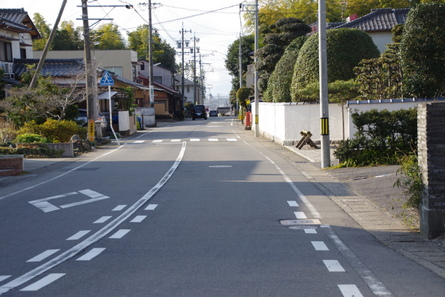 Shinkano16