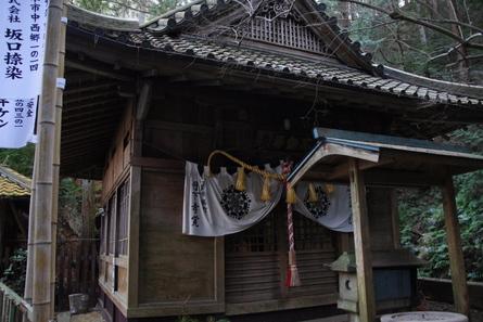 Yamanaka03