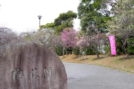 Mukaiyama01