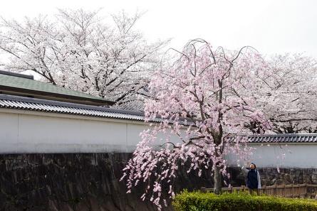 Okazaki08