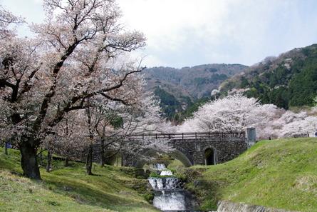 Kamagatani01