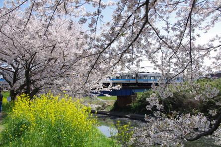 Iwakura08
