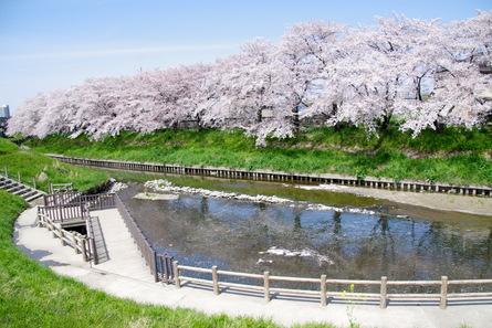 Iwakura11