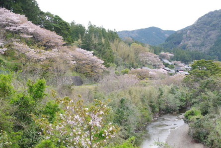 Yokowa06