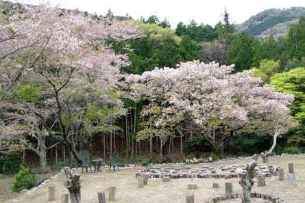 Yokowa08