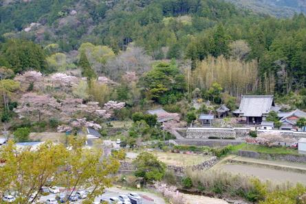 Yokowa09