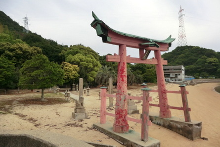 Iwashi14