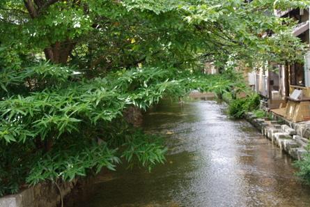 Takasegawa01
