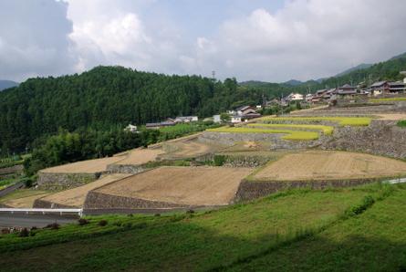 Fukano09