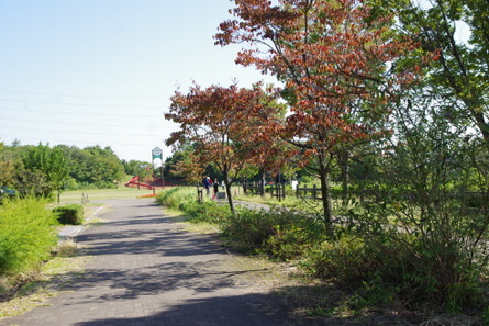 Todagawa12