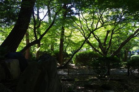 Ninomaru08