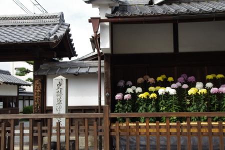 Kusatsu04
