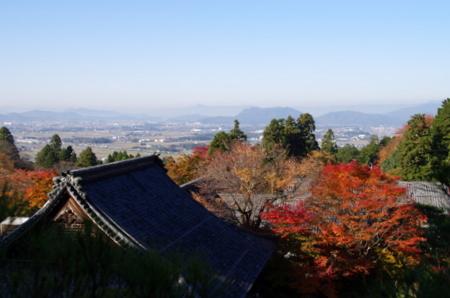 Hyakusaiji11