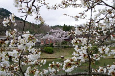 Meijimura04