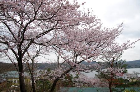 Meijimura11