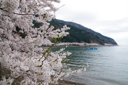 Kaizuo01