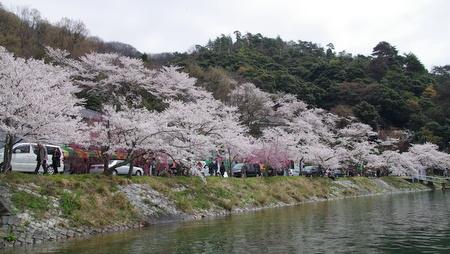 Kaizuo10
