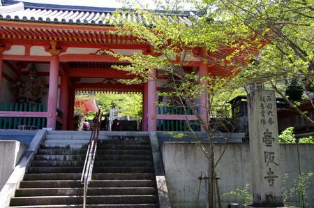 Tsubosaka012