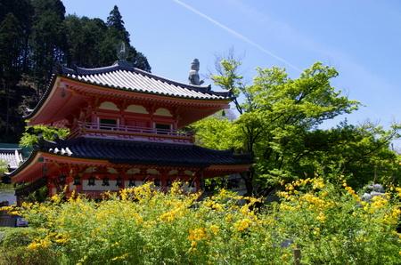 Tsubosaka06