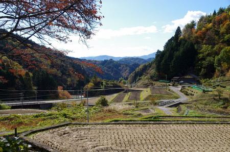 Gujyo01