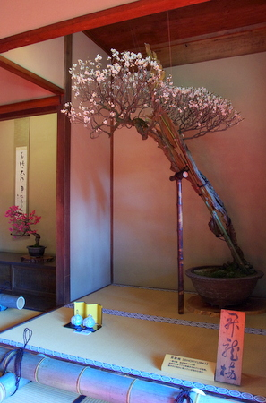 Nagahama09