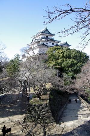 Wakayama11