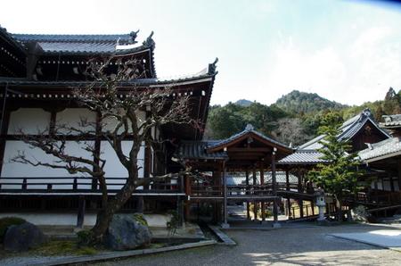 Saikyoji04