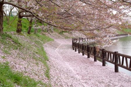 Koriyama01