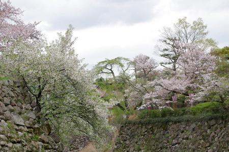 Koriyama07