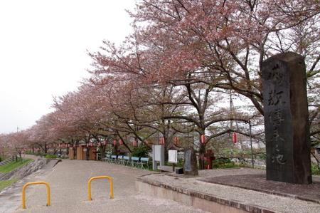 Yamanobe01