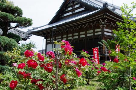 Mantokuji06
