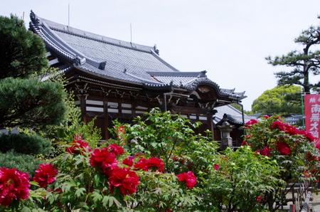 Mantokuji09