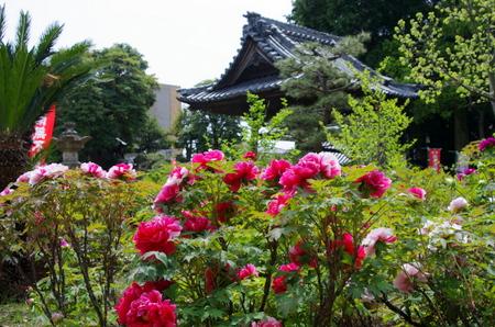 Mantokuji11